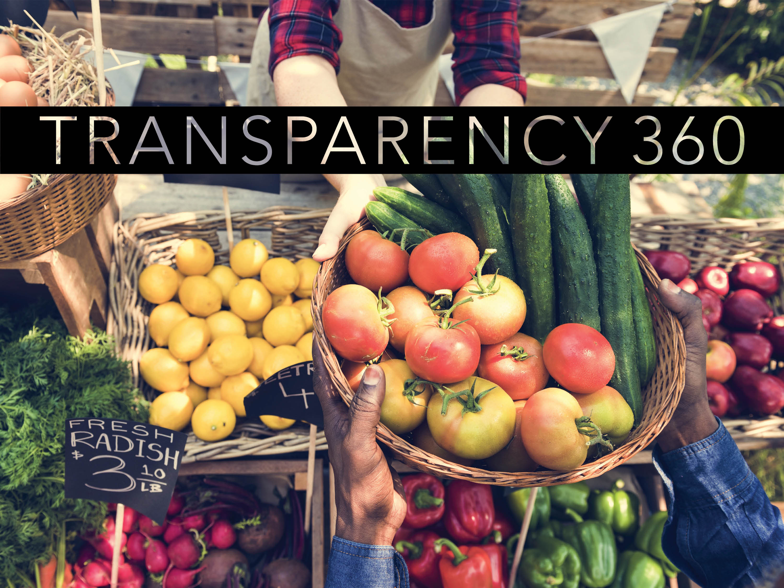 transparency360-Trends2020-lowres
